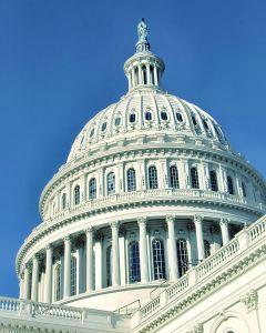 918333_u_s__capitol_building